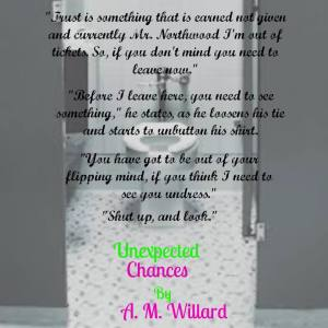Unexpected Chances teaser 5